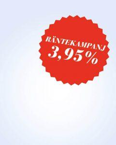 rante-640x800