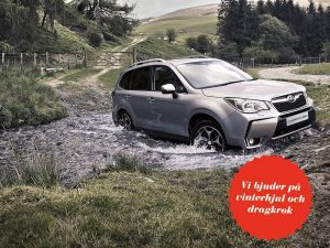 forester-1024x768