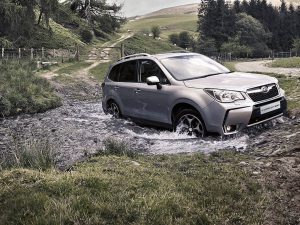 forester-2-1024x768