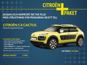 cactus-plus-1024x768