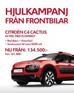 Cactus-640x800 (134500 kr)