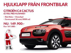 cactus-hjul-1024x768