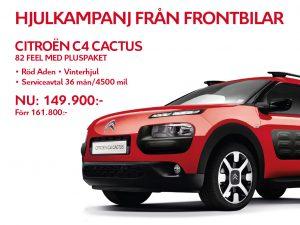 cactus-hjul-2-1024x768